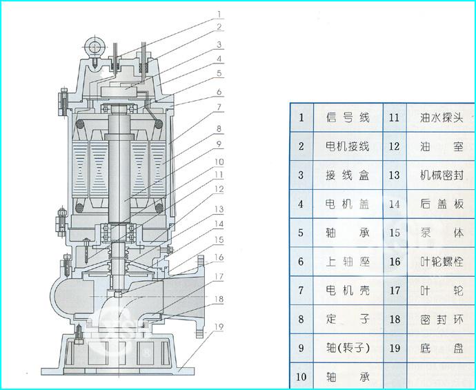 排污泵结构说明